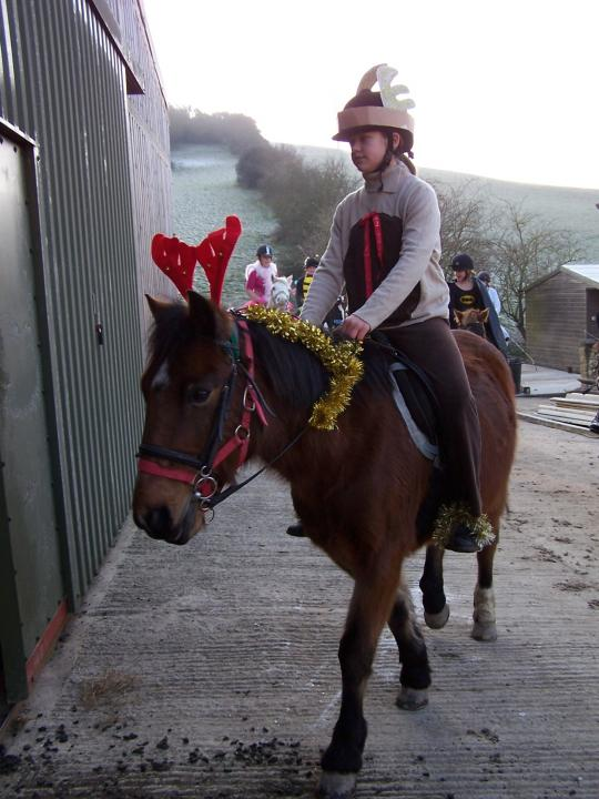chestnuts-riding-school-sussex-brighton-xmas-show-2008-05