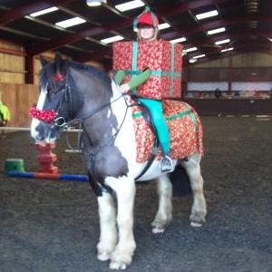 chestnuts-riding-school-sussex-brighton-xmas-show-2008-13