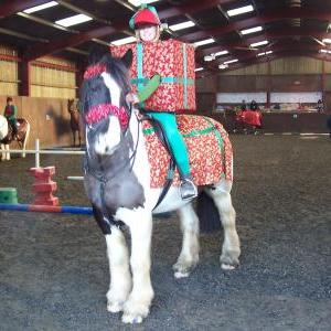 chestnuts-riding-school-sussex-brighton-xmas-show-2008-15