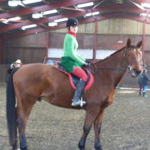 chestnuts-riding-school-sussex-brighton-xmas-show-2008-17