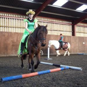 chestnuts-riding-school-sussex-brighton-xmas-show-2008-23
