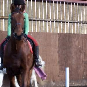 chestnuts-riding-school-sussex-brighton-xmas-show-2008-24