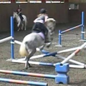 Snoopy & Elle jumping