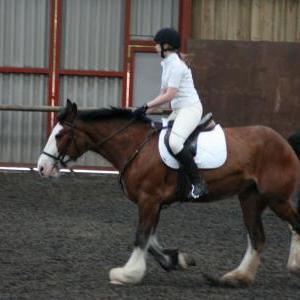 katie-and-daisy-chestnuts-riding-school-13-05-2009-b012-03