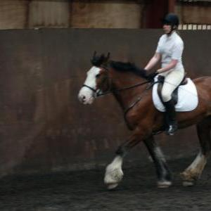 katie-and-daisy-chestnuts-riding-school-13-05-2009-b012-05