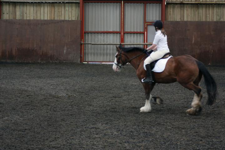 katie-and-daisy-chestnuts-riding-school-13-05-2009-b012-07