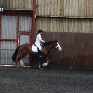 katie-and-daisy-chestnuts-riding-school-13-05-2009-b012-08
