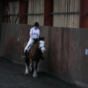katie-and-daisy-chestnuts-riding-school-13-05-2009-b012-10