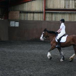 katie-and-daisy-chestnuts-riding-school-13-05-2009-b012-13