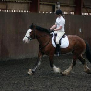 katie-and-daisy-chestnuts-riding-school-13-05-2009-b012-15