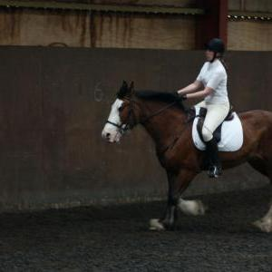 katie-and-daisy-chestnuts-riding-school-13-05-2009-b012-22