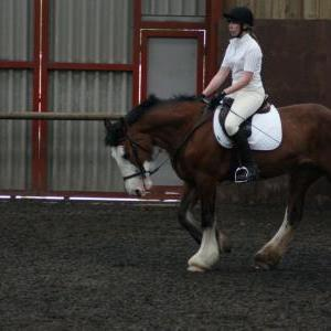 katie-and-daisy-chestnuts-riding-school-13-05-2009-b012-25