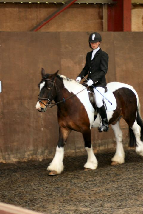 lilly-and-puzzle-chestnuts-riding-school-13-05-2009-b004-11