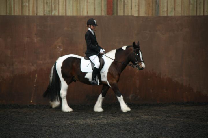 lilly-and-puzzle-chestnuts-riding-school-13-05-2009-b014-03