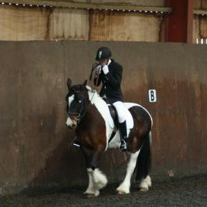 lilly-and-puzzle-chestnuts-riding-school-13-05-2009-b014-11