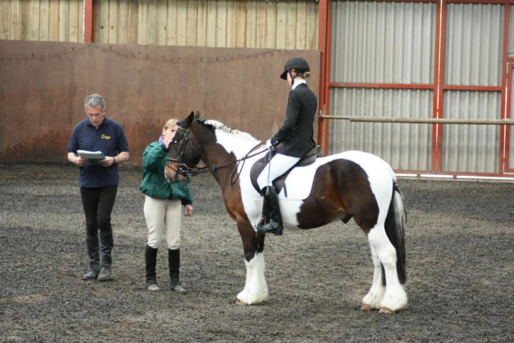 lilly-and-puzzle-chestnuts-riding-school-13-05-2009-b014-15