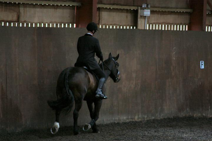 mervin-and-reilly-chestnuts-riding-school-15-05-2009-b006-19