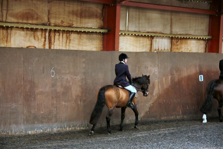 patsy-and-bud-chestnuts-riding-school-13-05-2009-b014-02