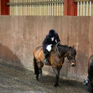 patsy-and-bud-chestnuts-riding-school-13-05-2009-b014-05