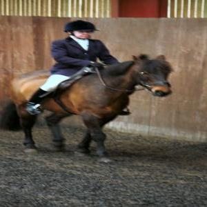 patsy-and-bud-chestnuts-riding-school-13-05-2009-b014-10
