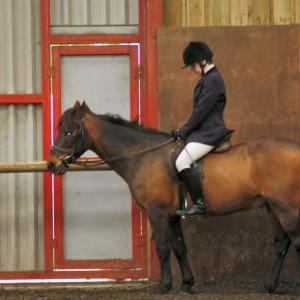 patsy-and-bud-chestnuts-riding-school-13-05-2009-b014-31