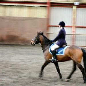patsy-and-bud-chestnuts-riding-school-13-05-2009-b014-41