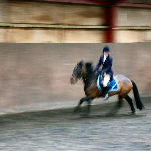 patsy-and-bud-chestnuts-riding-school-13-05-2009-b014-42