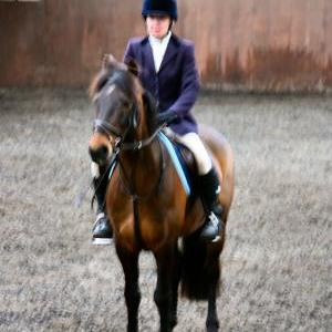 patsy-and-bud-chestnuts-riding-school-13-05-2009-b014-49