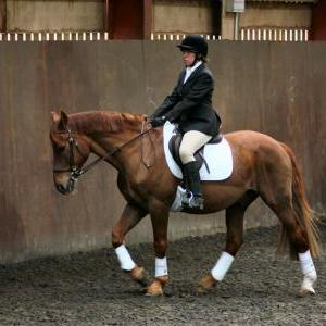 victoria-and-mcginty-chestnuts-riding-school-13-05-2009-b008-08