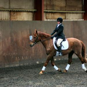 victoria-and-mcginty-chestnuts-riding-school-13-05-2009-b008-14