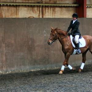 victoria-and-mcginty-chestnuts-riding-school-13-05-2009-b008-15