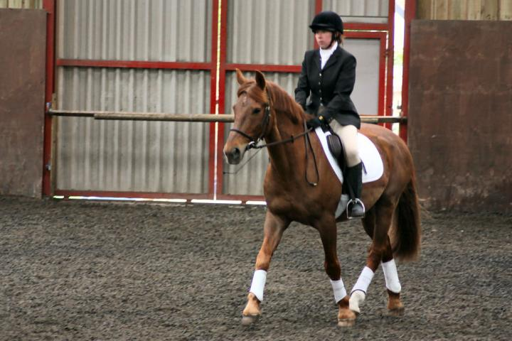 victoria-and-mcginty-chestnuts-riding-school-13-05-2009-b008-17