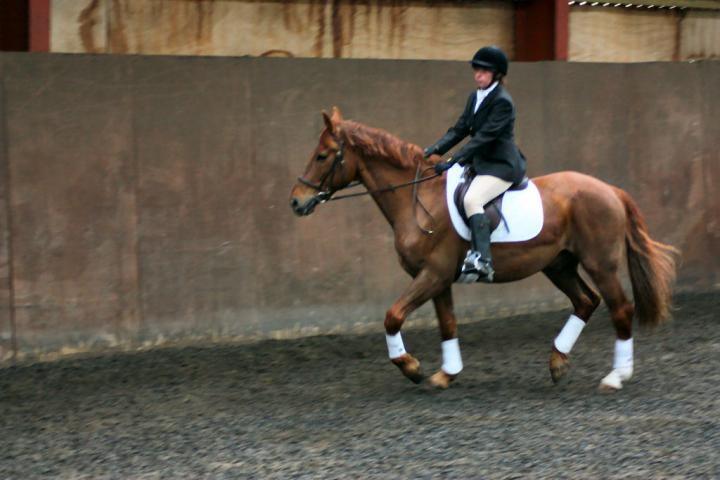 victoria-and-mcginty-chestnuts-riding-school-13-05-2009-b008-19