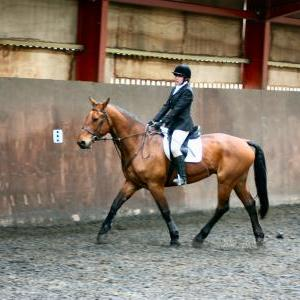 victoria-and-ronan-chestnuts-riding-school-13-05-2009-b009-04