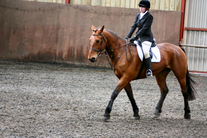 victoria-and-ronan-chestnuts-riding-school-13-05-2009-b009-07