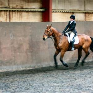 victoria-and-ronan-chestnuts-riding-school-13-05-2009-b009-10